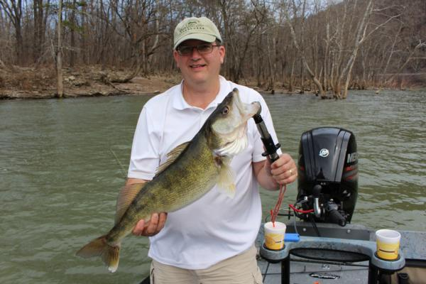 New River Pre-Spawn Walleyes