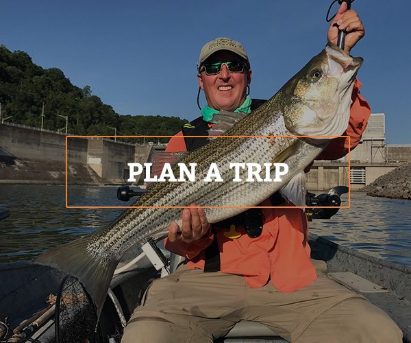 plan your guided fishing trip